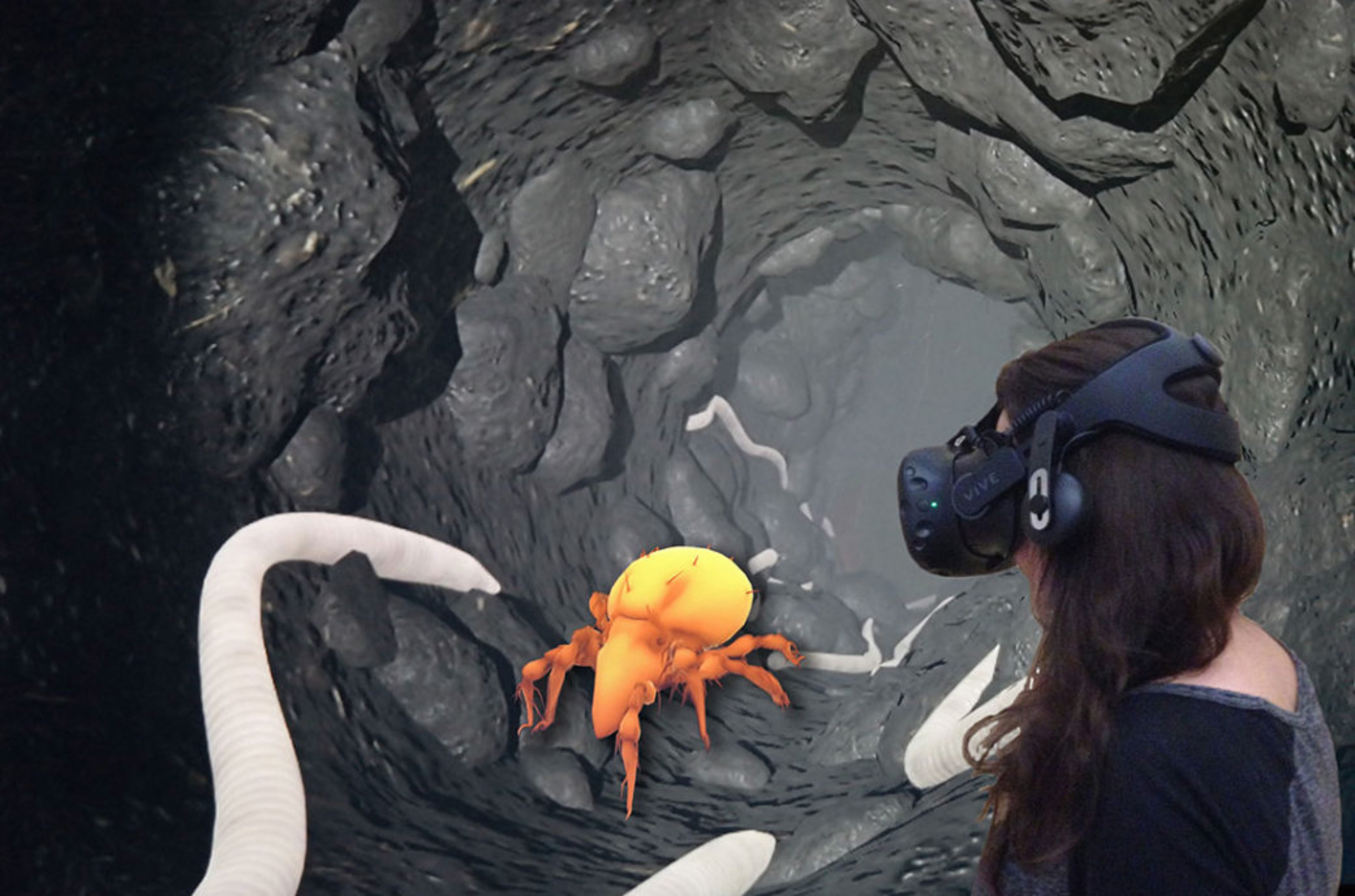 VR application of the Senckenberg Museum für Naturkunde Görlitz