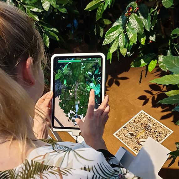 Evaluierung der AR-App Kosmos Kaffee