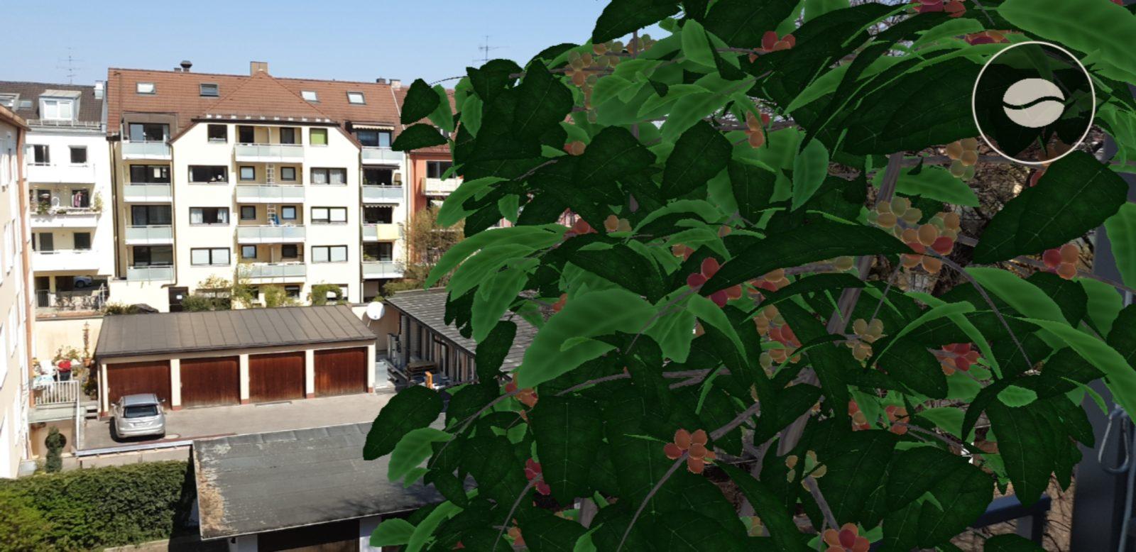 AR-App mit virtueller Kaffeepflanze für daheim