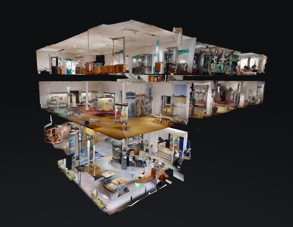 Görlitzer Senckenberg Museum für Naturkunde virtuell