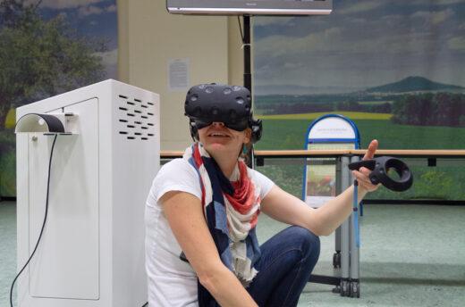 """Virtuell den Lebensraum """"Laubstreu"""" entdecken"""