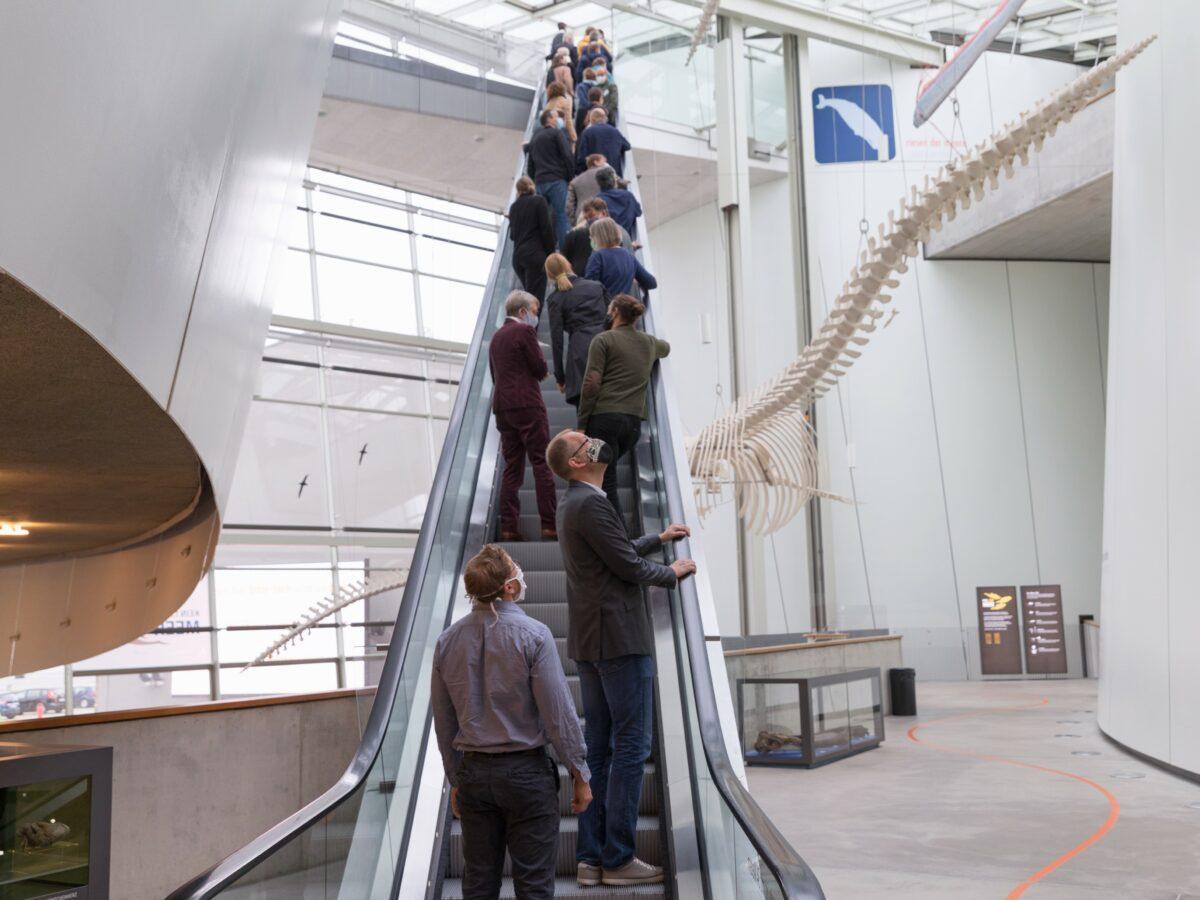 museum4punkt0 in den Startlöchern: Vorbereitungen für den neuen Verbund